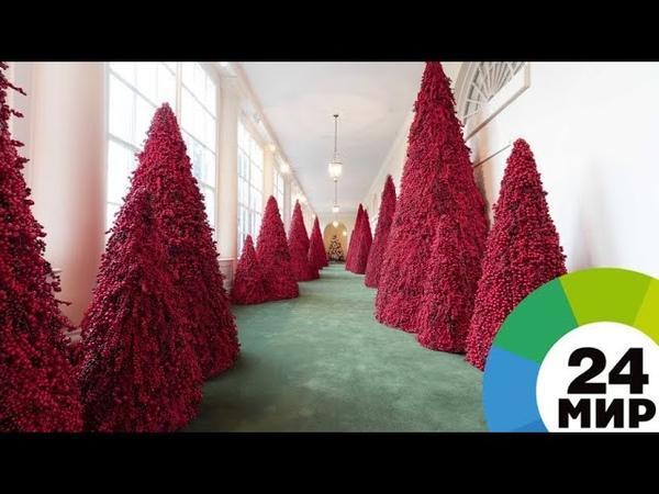 Меланию Трамп раскритиковали за необычные елки в Белом Доме - МИР 24