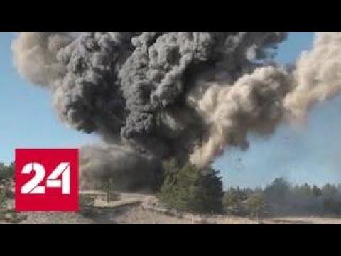 В Ленинградской области саперы ликвидировали смертельное эхо войны - Россия 24