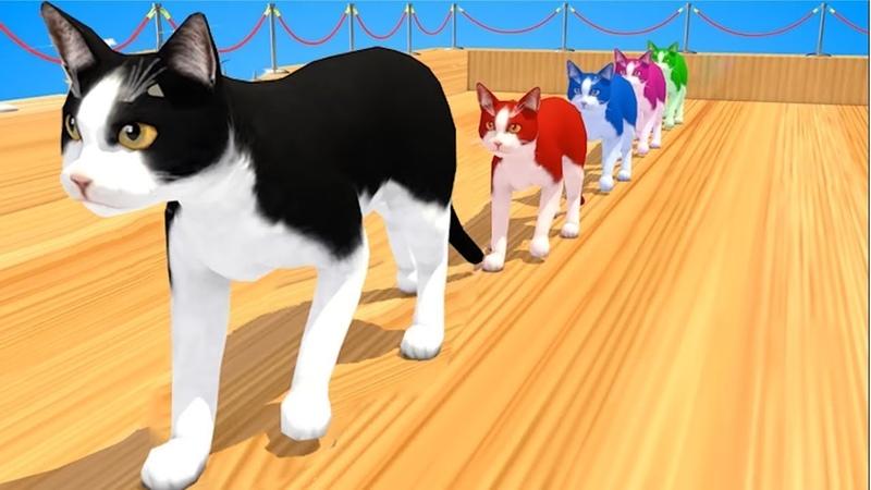 Los Animales De Granja Y Sus Crías Se Transforman En Animales Salvajes - Cats Colorful