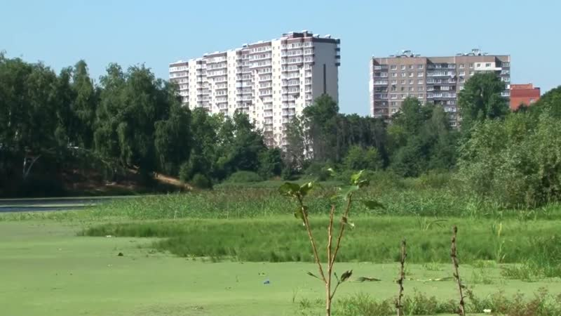 Район Саввино г.Железнодорожный