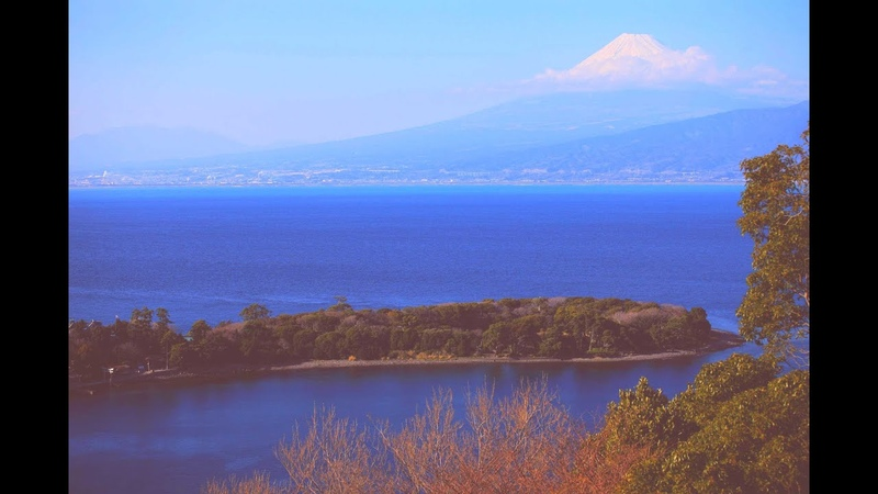 JG☆☆☆ 4K HDR 静岡 伊豆の早春と富士 大瀬崎のビャクシン(天然記念物)と井田12