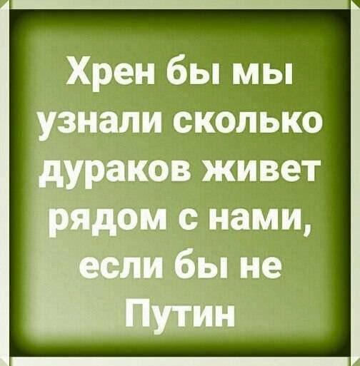 https://pp.userapi.com/c851036/v851036834/15690d/Nk4Xd9fHItU.jpg
