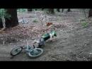 Mountain Bike Crash