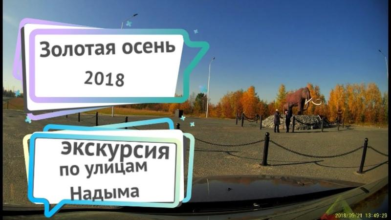 экскурсия по Надыму Золотая осень 2018