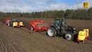 Zwillinge im Einsatz 2 Kubota M7151 Traktoren Grimme Pflanzmaschine GL 430 pflanzen Kartoffeln