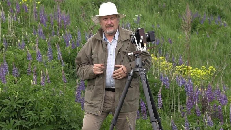 С В Савельев Плёнка и цифра Fujifilm GFX 50R