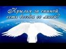 Крылья за спиной есть всегда со мной Ангельский Подарок для души так сладок
