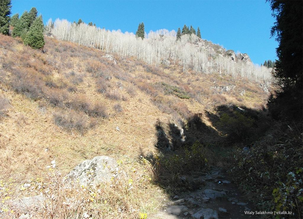 Роща, Подъем на Бутаковский водопад