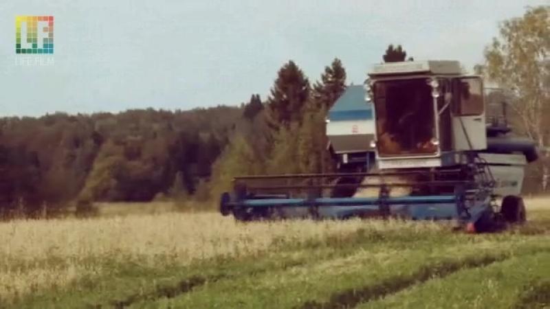 Сбор урожая в Коми-Пермяцком округе