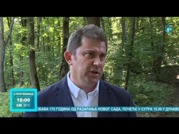 Šteta od nelegalne seče drveća na Fruškoj gori 580.000 dinara. 11-06-2019