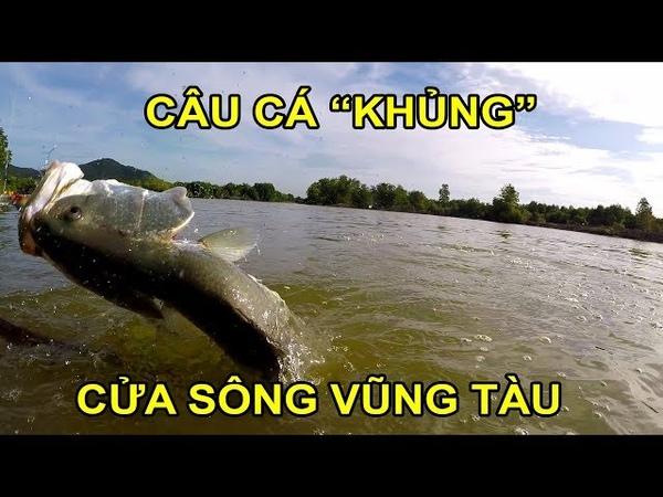Câu cá khủng ở đầm hoang Đảo Long Sơn Catching huge Barramundi in Longson island