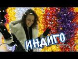 Индиго - Самое лучшее исполнение Дана Соколова и Скруджи - Алекса - Ведущая, Тамада