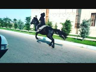 gulay.ferzeliyeva+InstaUtility_ad5b7.mp4