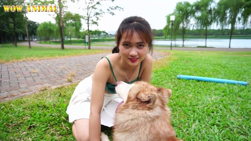 She Is Having Fun With The Cool Outdoor Dog That Is Really Interesting