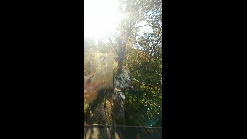 Вид из окна нашего номера в загородном комплексе имени Константина Эдуардовича Циолковского.