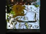 Жаралы журек жылама