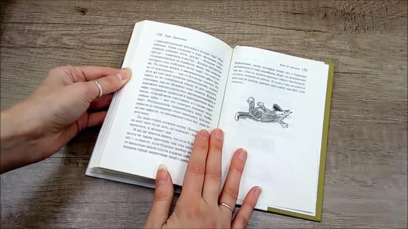 Книжные сливки 1 Кот без прикрас Терри Пратчетта