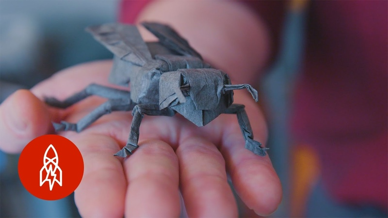 See a NASA Physicist's Incredible Origami