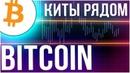 Биткоин киты покупают на $3200 мнение Аналитика курса Bitcoin новостные вбросы