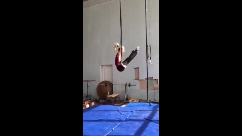 Итог стажировки у цирковых артистов