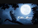 To the Moon 2019 (CSGO MOVIE)
