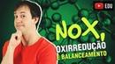9. NOX, Reações de Oxirredução e Introdução ao Balanceamento das Equações Químicas [Química Geral]