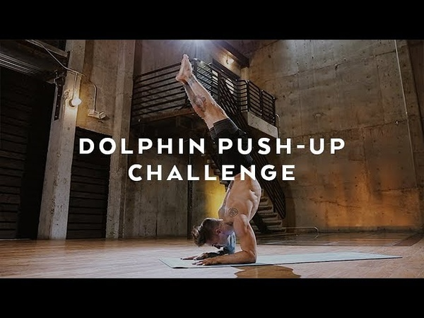 Dolphin Pose Push Up Challenge with Dylan Werner Yoga