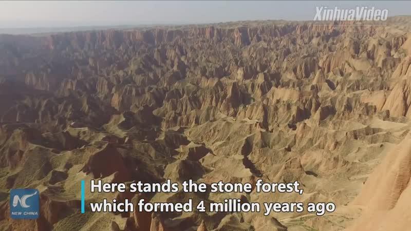 Удивительное рядом: Каменный лес в Цзянсу