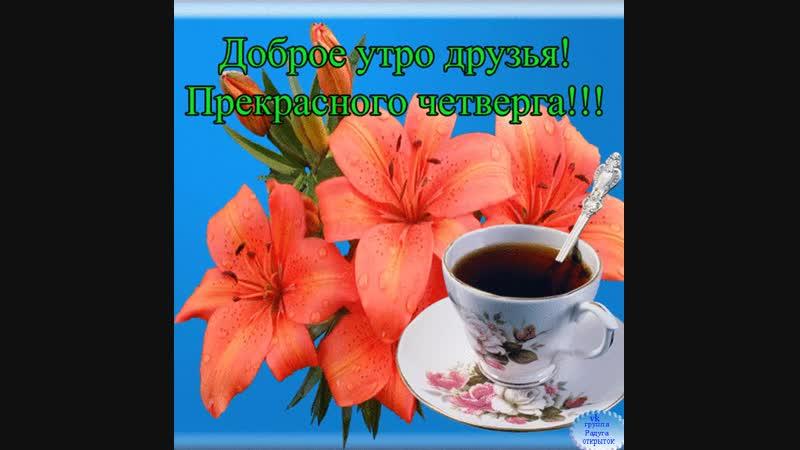 Doc308355082_490924833.mp4