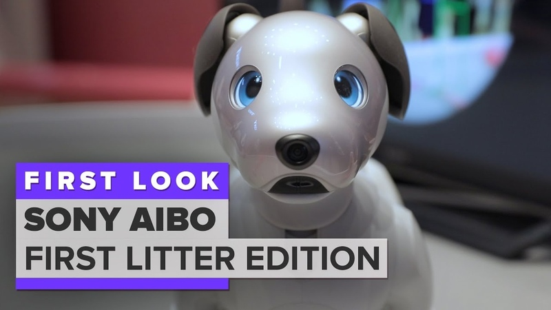 We played with Aibo Sonys $2,899 robot dog
