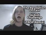 The Revelation Of Pain - Skibidi_Challenge (TROP Remix)