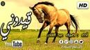 أنشودة قيدوني 😮 للمنشد الفلسطيني ضياء عبد القادر HD