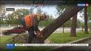 Новости на Россия 24 Возмещение ущерба после урагана ажиотажа в страховых компаниях нет