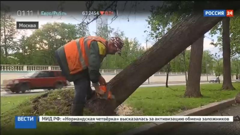 Новости на Россия 24 • Возмещение ущерба после урагана: ажиотажа в страховых компаниях нет