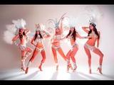 Samba Dancers - Los Angeles - Brazilian Dancers - The Dancing Fire Company