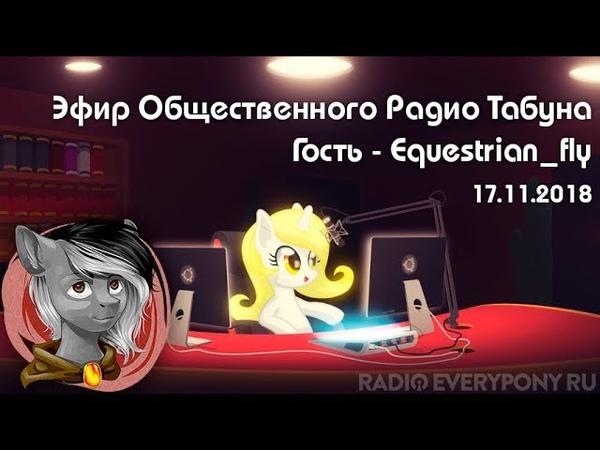 Эфир Общественного Радио Табуна 17.11.2018. Гость - Equestrian_fly