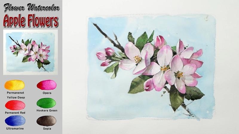 사과꽃 꽃 수채화 그리기 Apple Flowers watercolor on Arches Rough