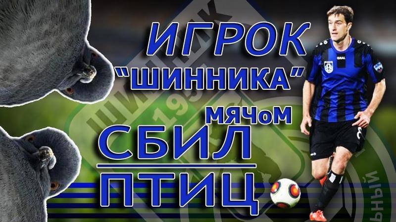 Игрок Шинника Цховребов подбил мячом птицу во время матча ФНЛ
