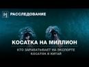 Косатка на миллион. Расследование «Новой газеты»