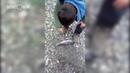 На Дальнем Востоке из-за рекордного улова рыбаки выбрасывают рыбу