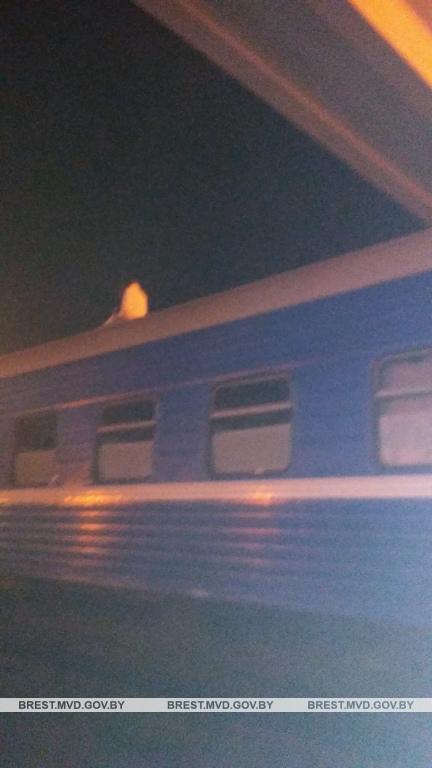 Женщина спрыгнула с пешеходного моста через ЖД пути и упала на крышу вагона поезда