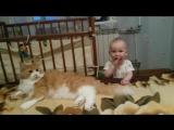 Вика и кот.mp4