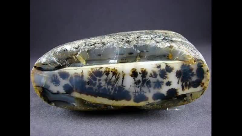 * Драгоценные камни и минералы Моховой агат ( Agate )
