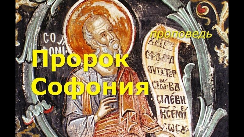 Открываем новое имя: пророк Софония
