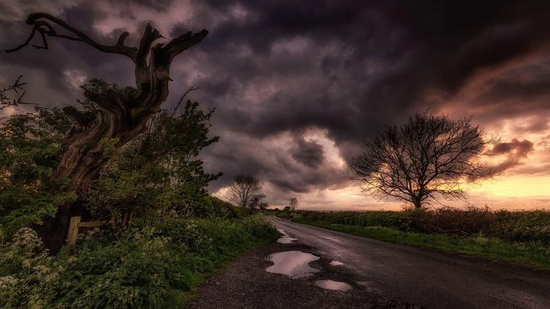 Картинка природа. Дорога, тучи, облака, пейзаж, лужа, дерево.