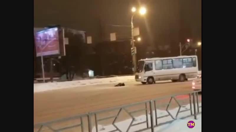 В Самаре пешеход с разбегу протаранил автобус..