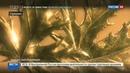 Новости на Россия 24 Из музея в Берлине украли золотую монету весом 100 килограммов