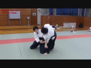 Dynamic Aikido. Ширакава сэнсей