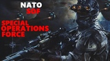 NATO Special Operations Forces ( S O F ) Military Defense