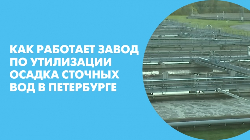 Как работает завод по утилизации осадка сточных вод в Петербурге